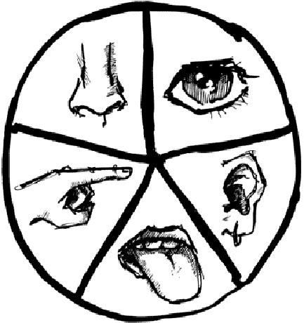 human-senses