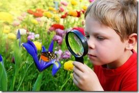 Kind Butterfly