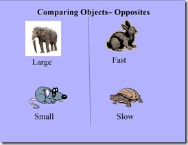 Comparing Objects-Opposites Page (Example)