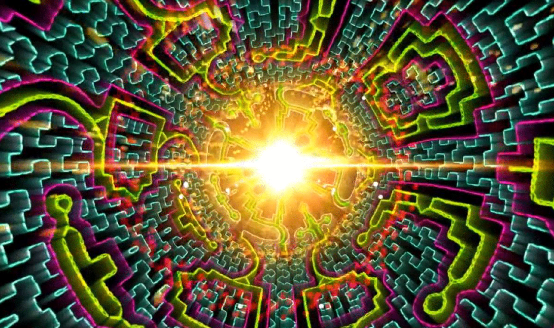Ayahuasca a Hack with Which You Can REPROGRAM Yourself