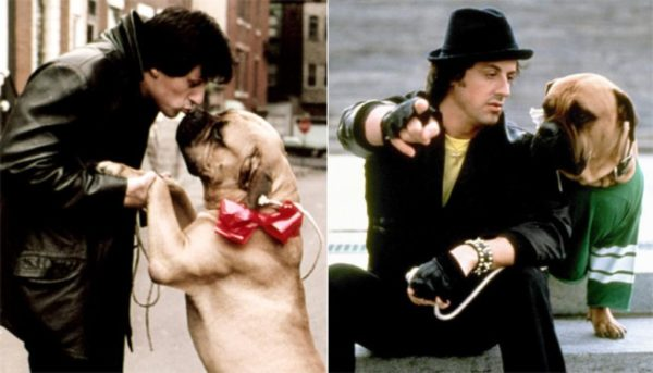 The INCREDIBLE Real Life Story of Sylvester Stallone