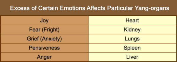 How Emotions are Linked with Organs