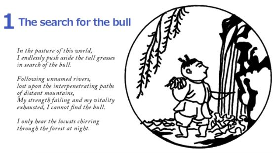 10 Bulls - The Search for The Bull