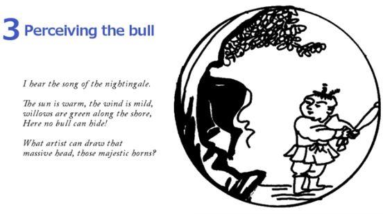 10 Bulls - Perceiving The Bull