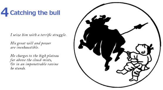 10 Bulls - Catching The Bull 4