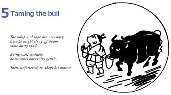 10 Bulls - Taming The Bull