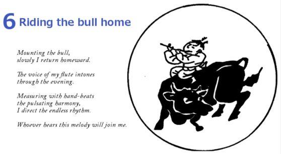10 Bulls - Riding The Bull Home 6