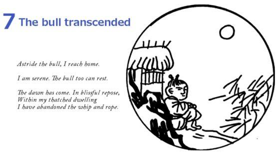 10 Bulls - The Bull Transcended 7
