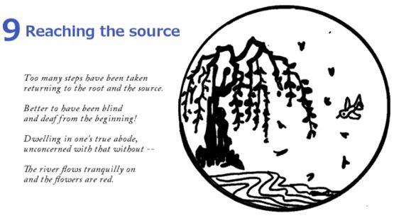 10 Bulls - Reaching The Source 9