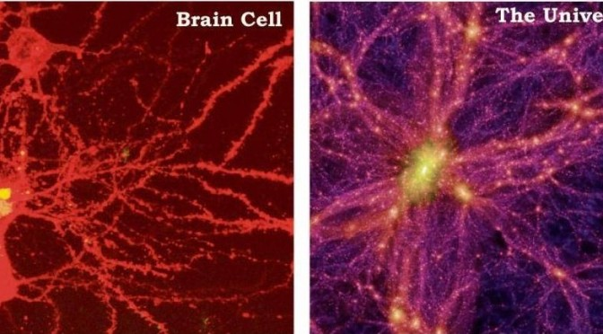 Studies Discover How The Universe Grows Just Like A Brain! Could It Be Possible That We Live Inside...
