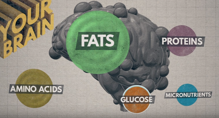 how-food-affects-the-world
