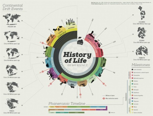 history-of-life-as-we-know-it