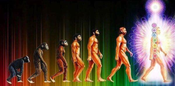human evolution and consciousness