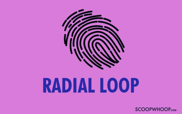 Radial Loop