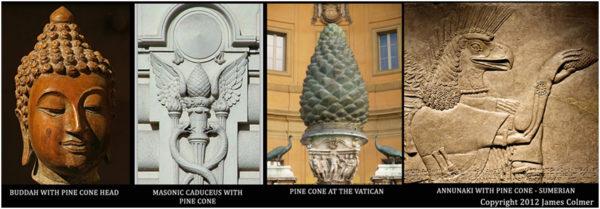 The Third Eye Pine Cone