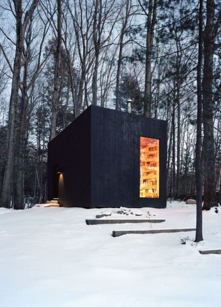 cozy-library-in-the-middle-of-nowhere-1