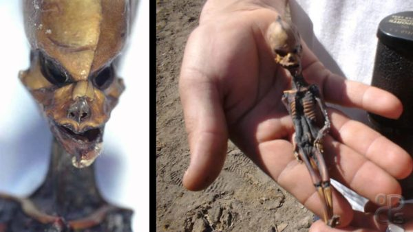 scientists-still-have-no-idea-what-is-with-the-atacama-alien-in-hand