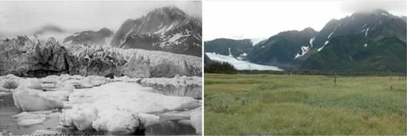 pedersen-glacier-alaska-summer-1917-summer-2005