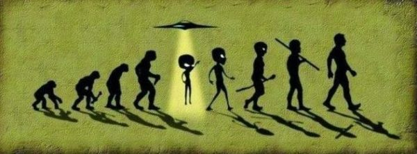 Theory of Evolution Alien