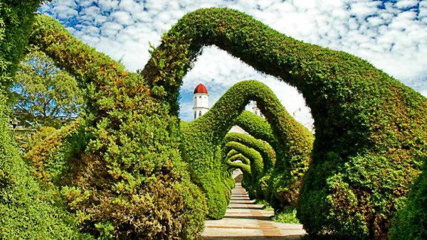 parque-francisco-alvarado-topiaries-zancera-costa-rica