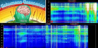 Schumann Resonance Spiking