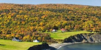 SMALL CANADIAN TOWN OFFERS LAND