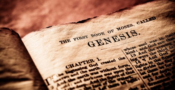 The Story Of Genesis