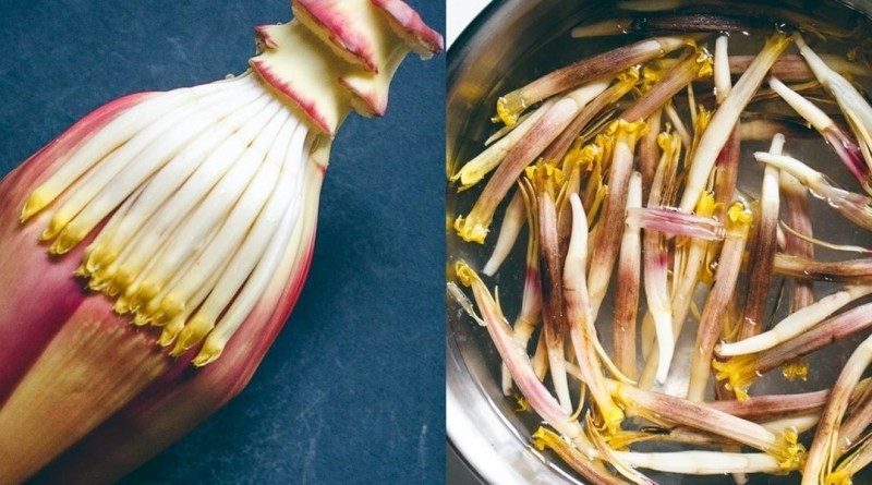 banana-flower Health Benefits