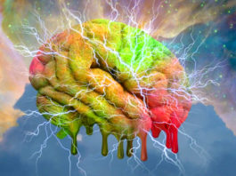 Harvard Researchers Claim They've Found The Source Of Consciousness!