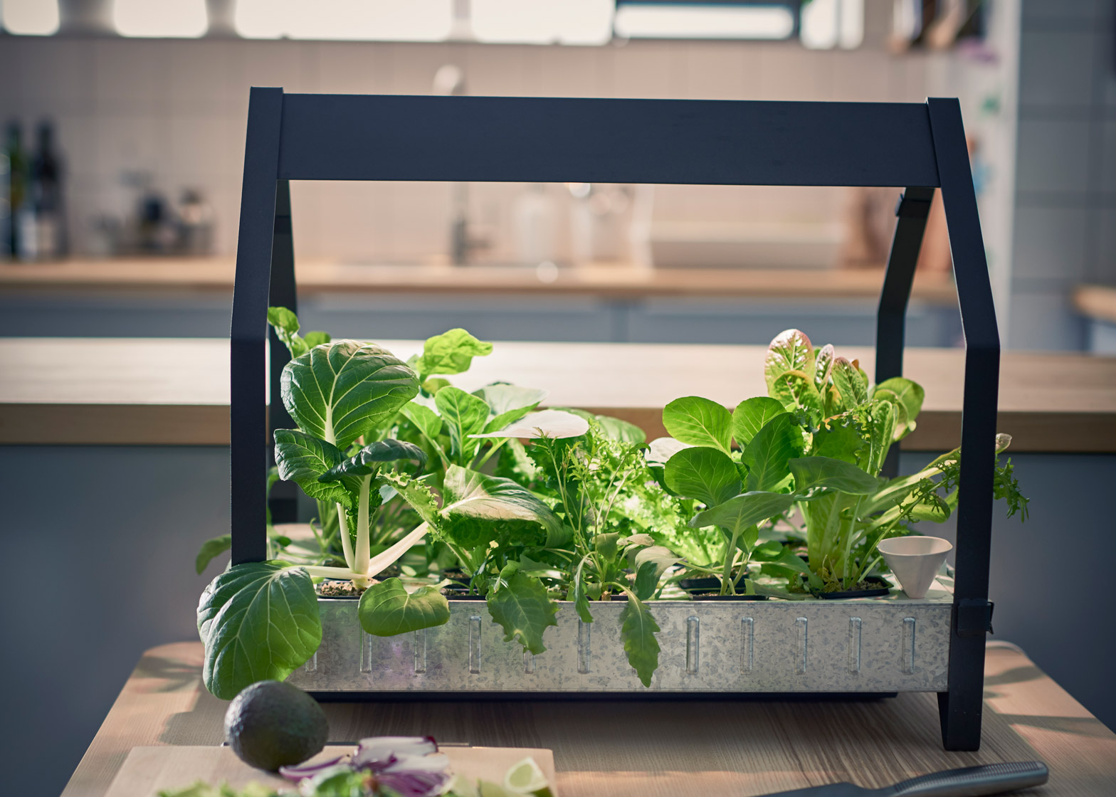 Indoor Hydroponic Garden. Ikea\u0027s Hydroponic System Allows You To Grow  Vegetables Indoor Garden