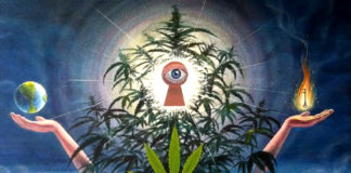 What Happens In The 3rd Eye When We Smoke Cannabis
