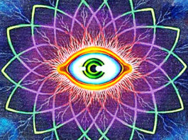 best 6 supplements to boost your Pineal Gland Capabilities
