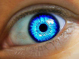 Blue Eyes Don't Exist