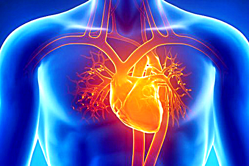 New Mindboggling Research Proves That Our Hearts Create Their Own Memories!