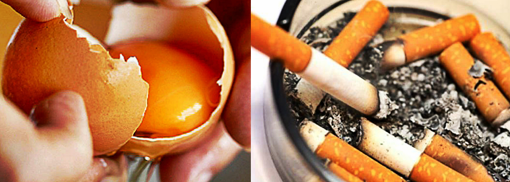 Research Discovered Eating 1 Egg Per Day Is As Bad As Sm Ng 5 Cigarettes