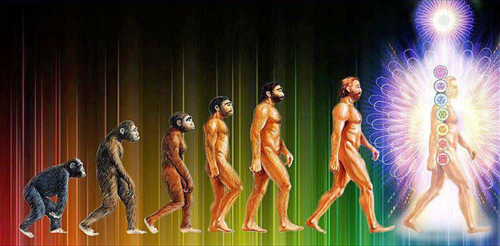 The Right Path Of Evolution