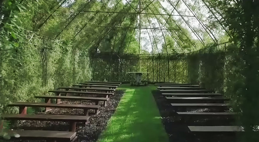 Tree Church 4