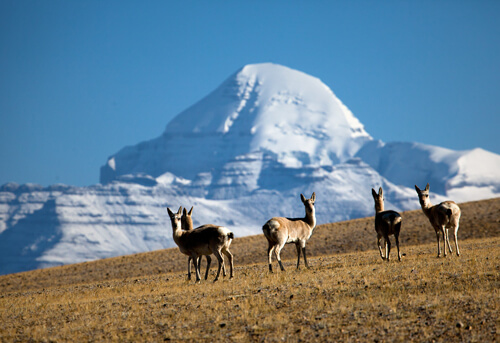 Most Beautiful Places On Earth 12.-Mount-Kailash-GC¦зo¦В-Transhimalaya-Mountain-Range-Tibet
