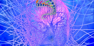 How Influence Your DNA With Thoughts