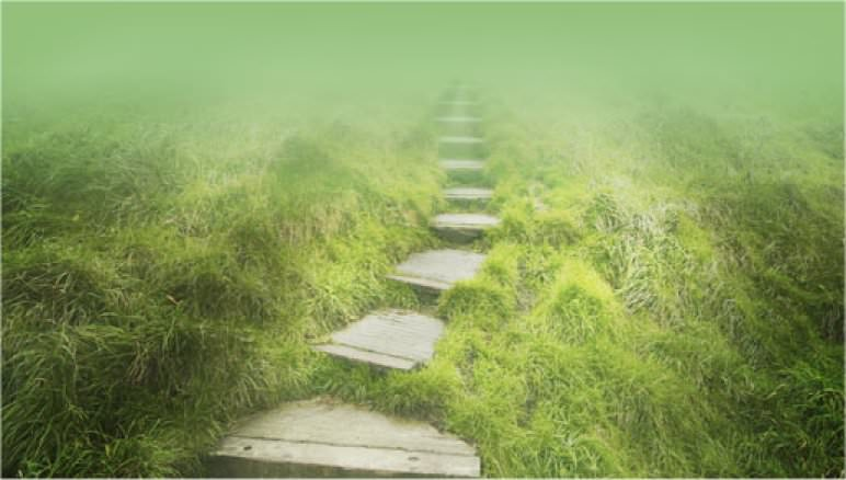 The One Biggest Difference Between Spiritual Path and Spiritual Journey