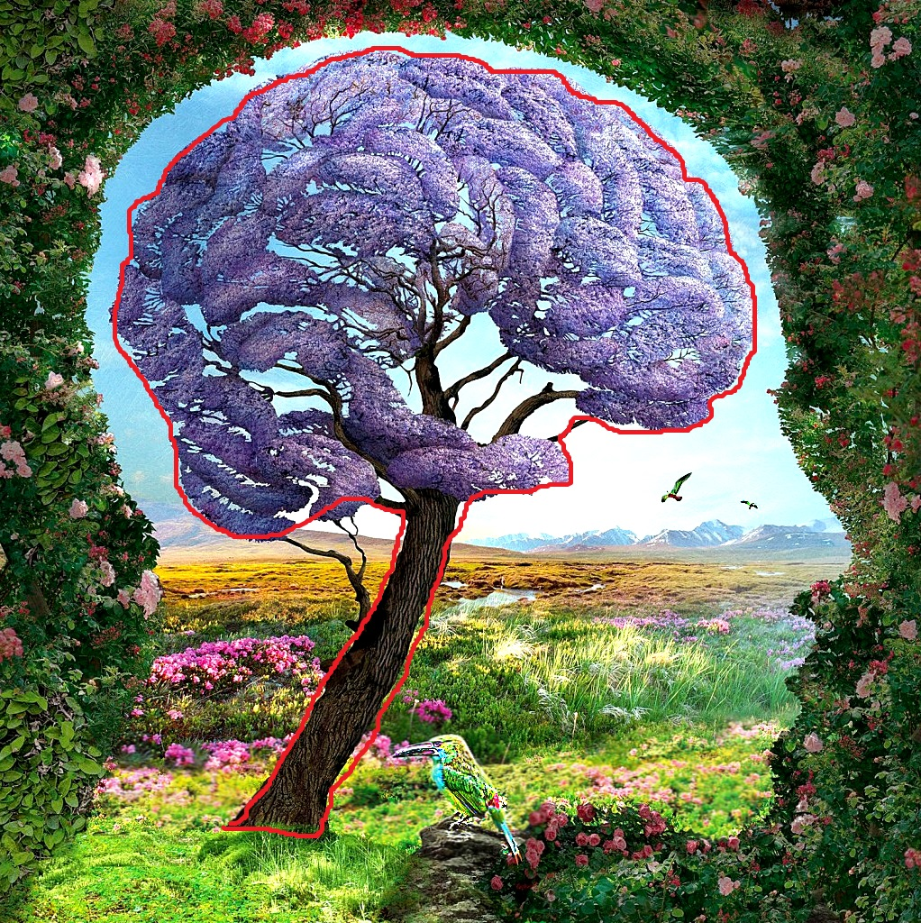 The First Detail That You See On This Image Reveals Unconscious Secrets of Your Personality - Brain and Tree