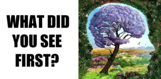 The First Detail That You See Reveals Secrets of Your Personality