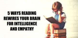 Reading Rewires Your Brain For Intelligence And Empathy Research