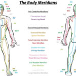 What are Meridians?