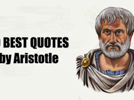most-significant-quotes-by-aristotle