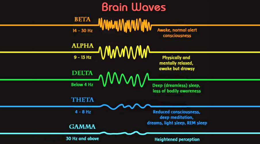 the-5-basic-brainwave-states-shapes-your-reality