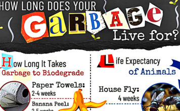 how-long-your-garbage-lives-compared-to-animals