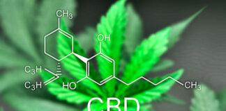 health-benefits-of-cbd-oil