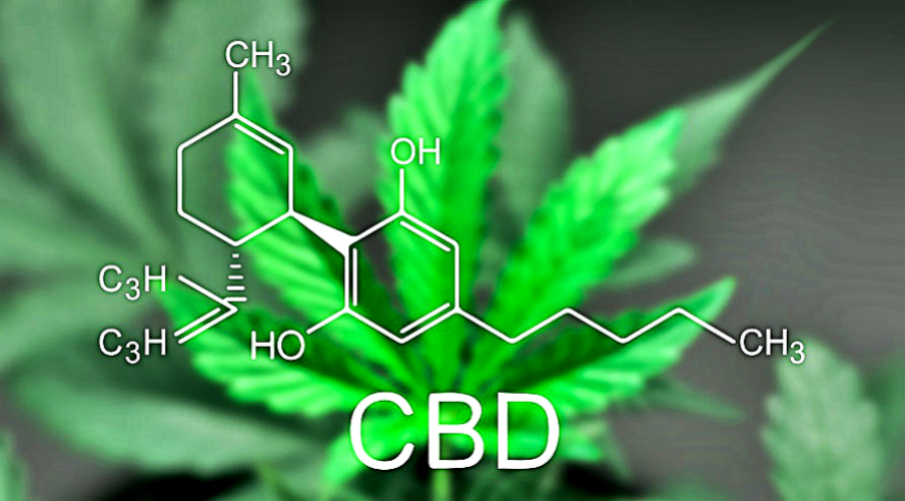 health-benefits-of-cbd-oil