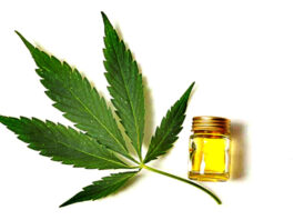 cbd-oil-how-can-we-use-it-to-stay-healthy